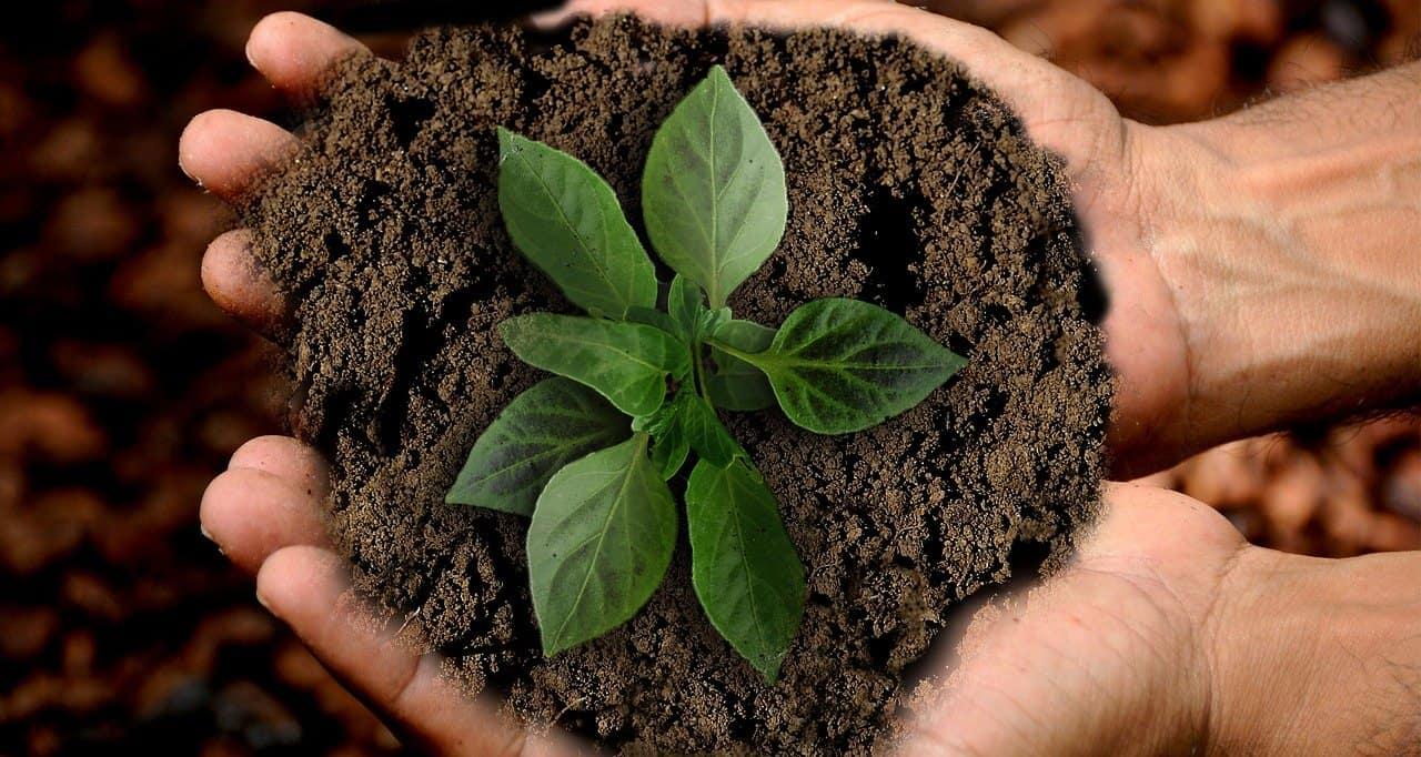 Nachhaltige Hausrat, Haftpflicht, Investmentrente